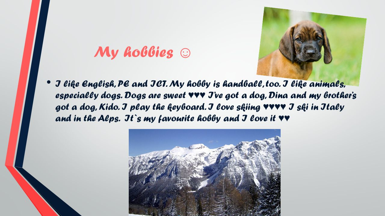 My hobbies I like English, PE and ICT. My hobby is handball, too. I like animals, especially dogs. Dogs are sweet Ive got a dog, Dina and my brothers