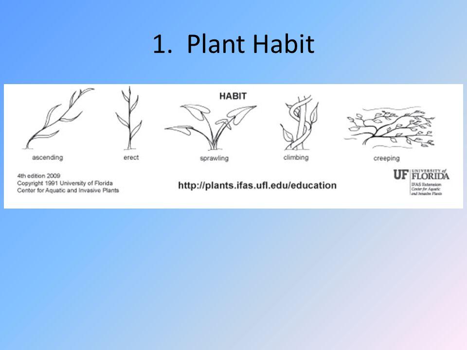 1. Plant Habit