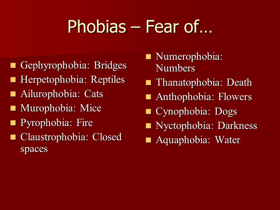 Phobias – Fear of… Gephyrophobia: Bridges Gephyrophobia: Bridges Herpetophobia: Reptiles Herpetophobia: Reptiles Ailurophobia: Cats Ailurophobia: Cats Murophobia: Mice Murophobia: Mice Pyrophobia: Fire Pyrophobia: Fire Claustrophobia: Closed spaces Claustrophobia: Closed spaces Numerophobia: Numbers Numerophobia: Numbers Thanatophobia: Death Thanatophobia: Death Anthophobia: Flowers Anthophobia: Flowers Cynophobia: Dogs Cynophobia: Dogs Nyctophobia: Darkness Nyctophobia: Darkness Aquaphobia: Water Aquaphobia: Water
