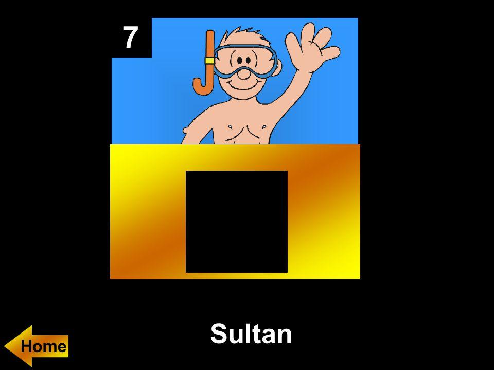 7 Sultan