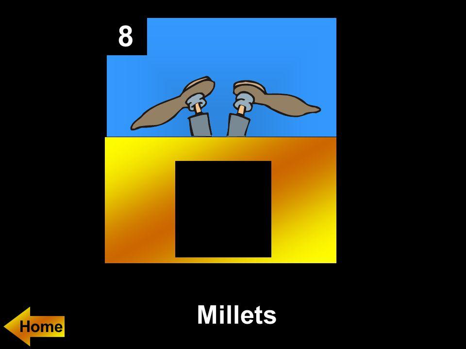 8 Millets