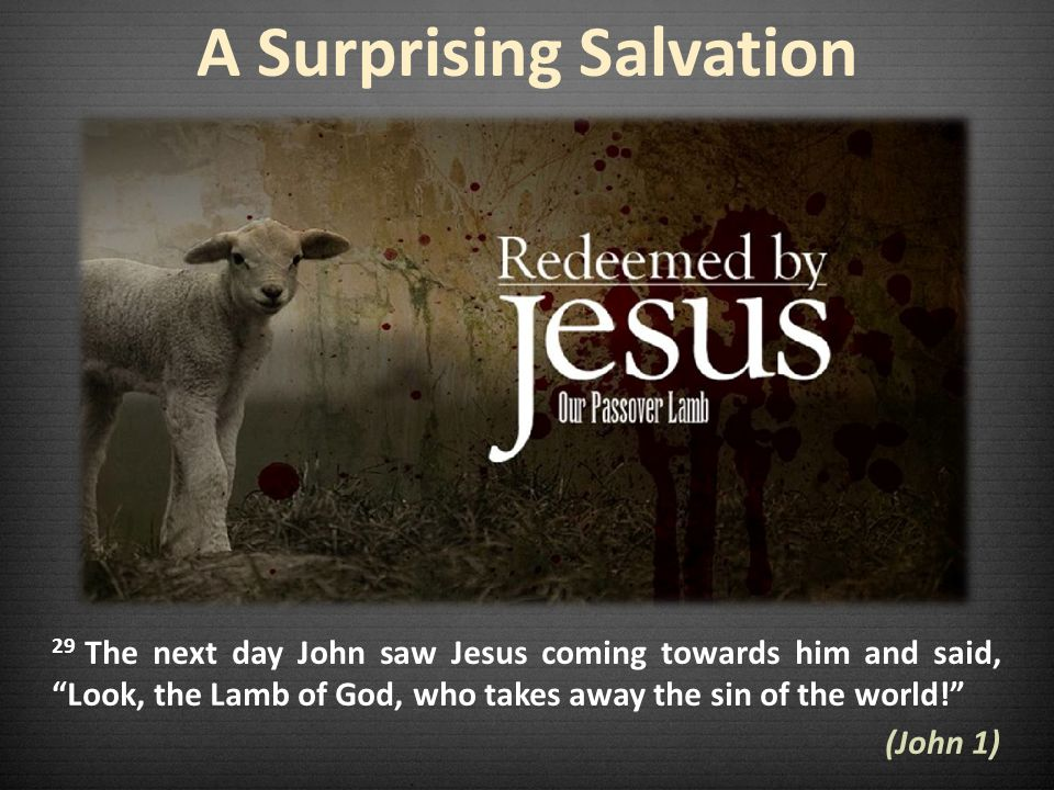 A Surprising Salvation 29 The next day John saw Jesus coming towards him and said, Look, the Lamb of God, who takes away the sin of the world.