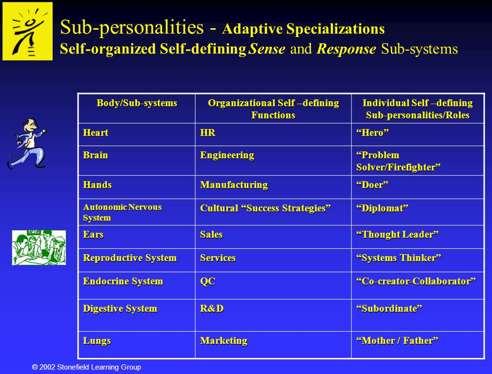 © 2002 Stonefield Learning Group Sub-personalities - Adaptive Specializations Self-organized Self-defining Sense and Response Sub-systemsBody/Sub-syst
