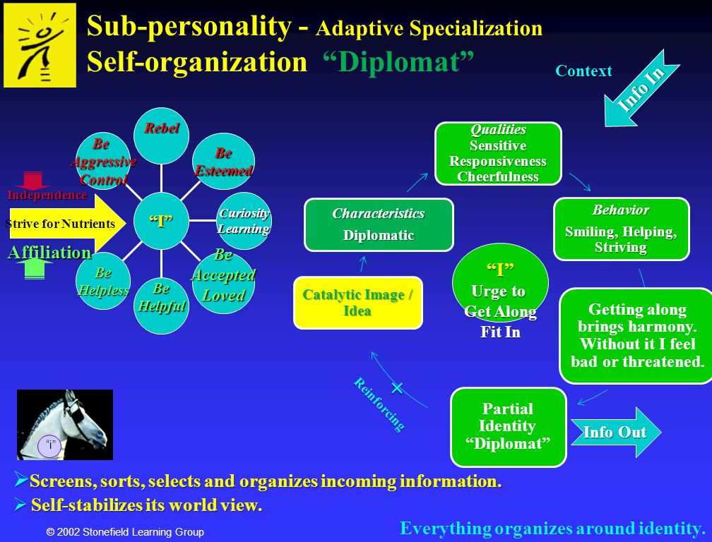 © 2002 Stonefield Learning Group Sub-personality - Adaptive Specialization Self-organization Diplomat i Everything organizes around identity. Screens,