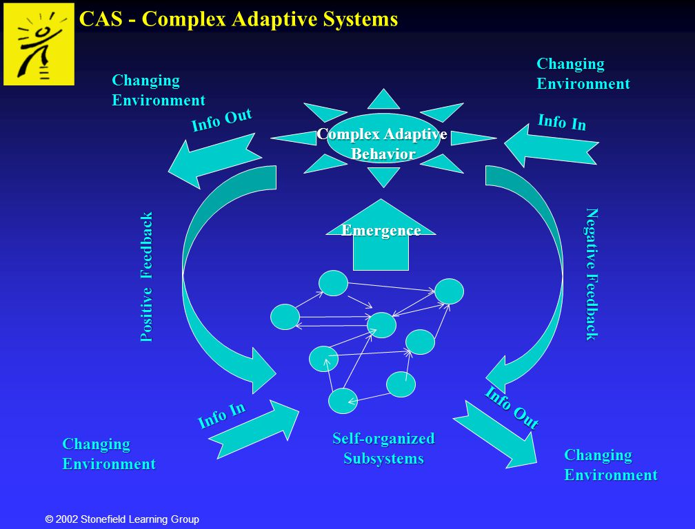 © 2002 Stonefield Learning Group Sub-personality - Adaptive Specialization Self-organization Diplomat i Everything organizes around identity.