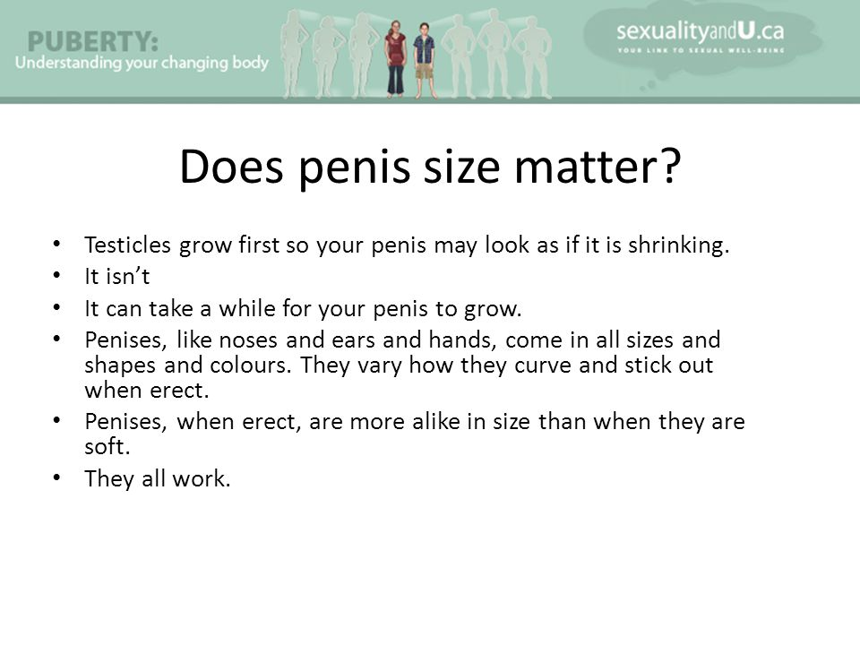 Does penis size matter.Testicles grow first so your penis may look as if it is shrinking.