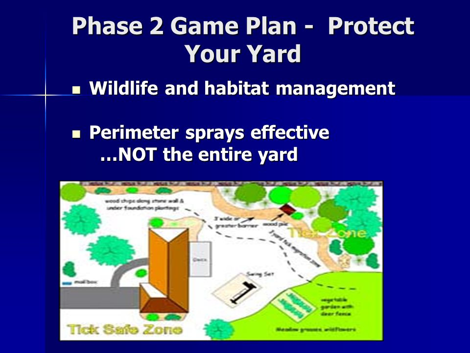 Phase 2 Game Plan - Protect Your Yard Wildlife and habitat management Wildlife and habitat management Perimeter sprays effective Perimeter sprays effective …NOT the entire yard …NOT the entire yard