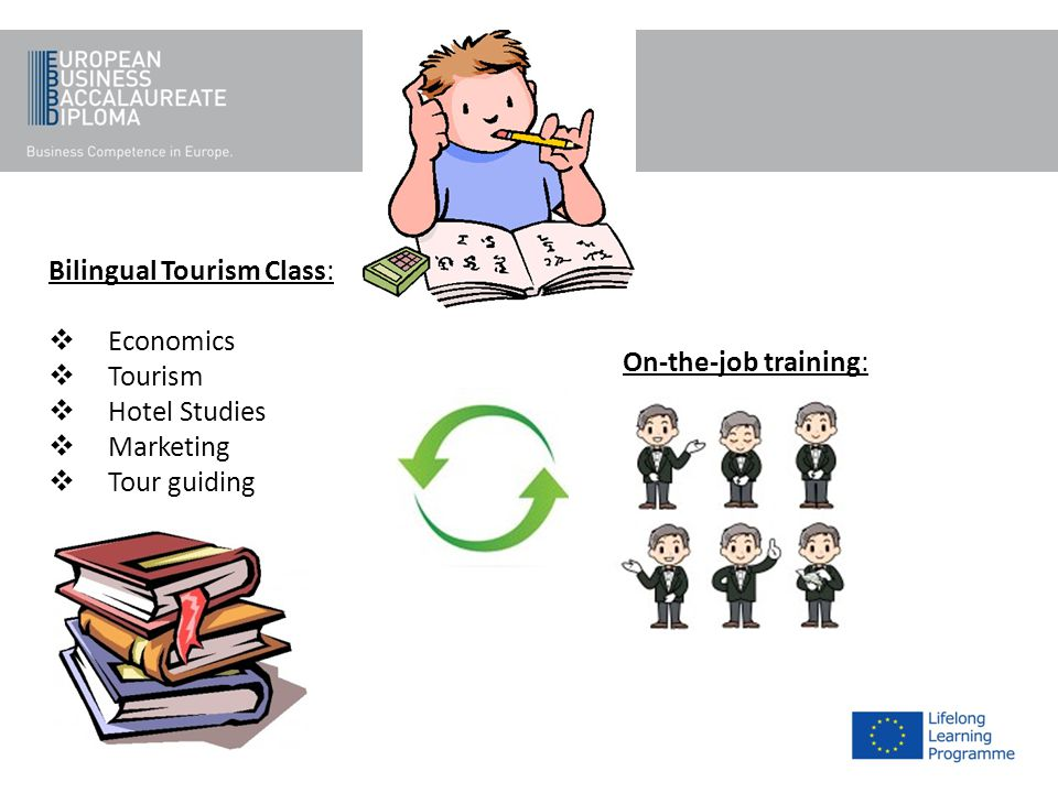 Bilingual Tourism Class: Economics Tourism Hotel Studies Marketing Tour guiding On-the-job training: