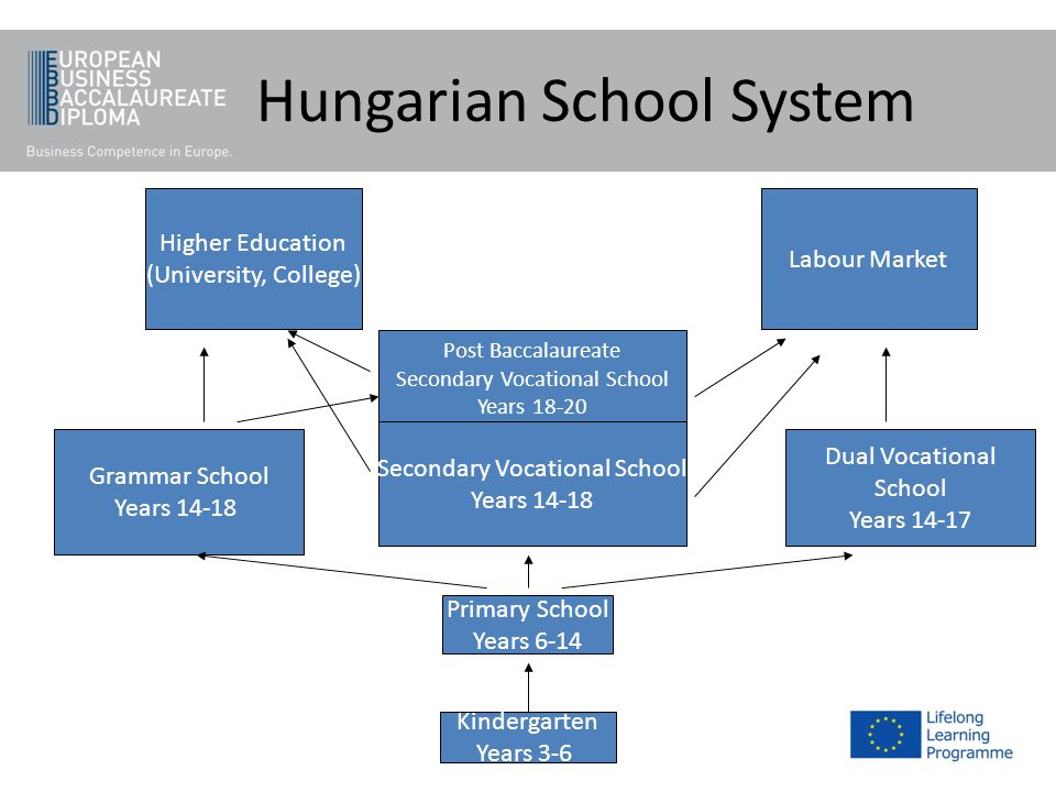 Higher Education (University, College) Labour Market Post Baccalaureate Secondary Vocational School Years 18-20 Secondary Vocational School Years 14-1