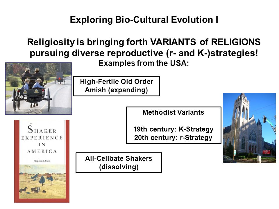 Exploring Bio-Cultural Evolution I Religiosity is bringing forth VARIANTS of RELIGIONS pursuing diverse reproductive (r- and K-)strategies.