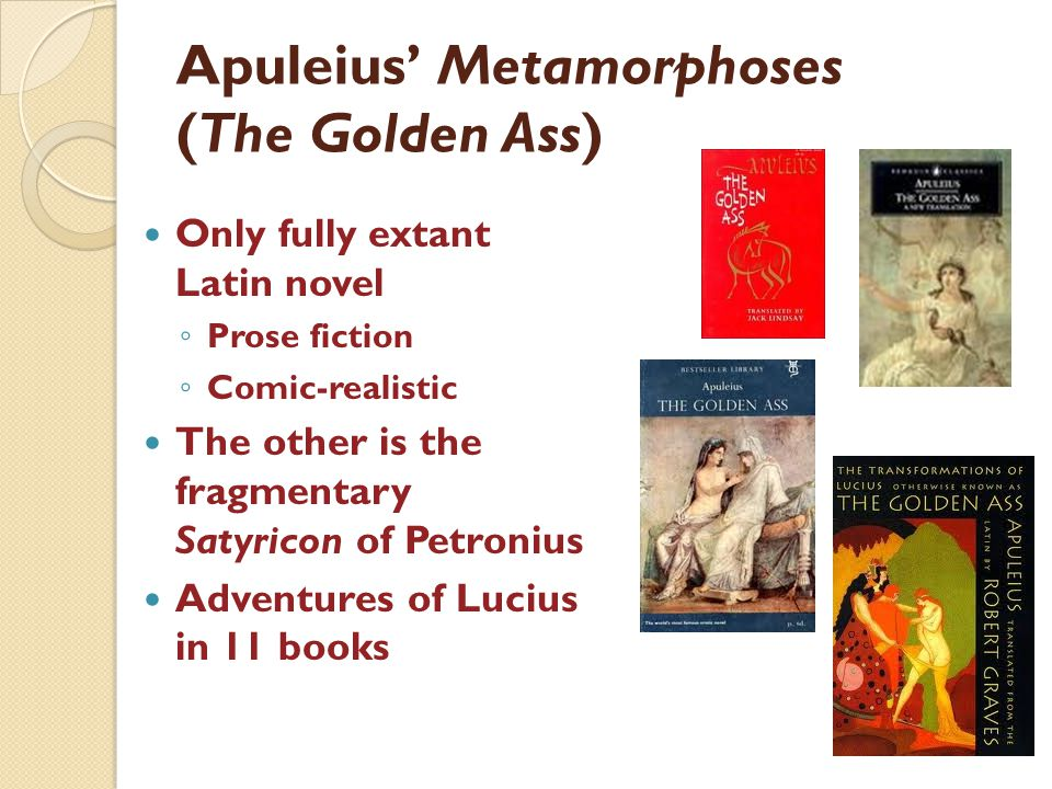 Apuleius Metamorphoses (The Golden Ass) Only fully extant Latin novel Prose fiction Comic-realistic The other is the fragmentary Satyricon of Petronius Adventures of Lucius in 11 books