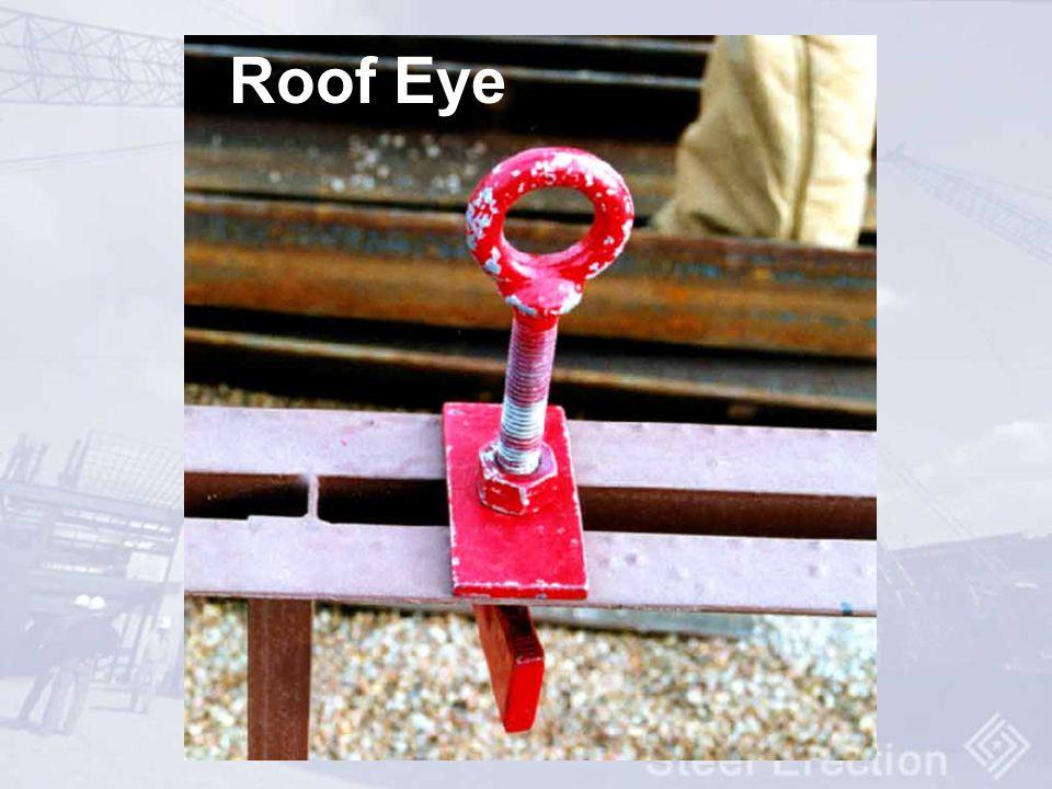 Roof Eye