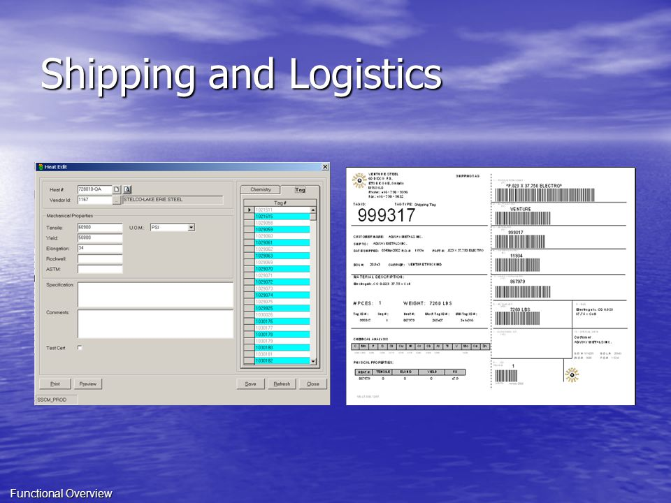 Shipping and Logistics Functional Overview