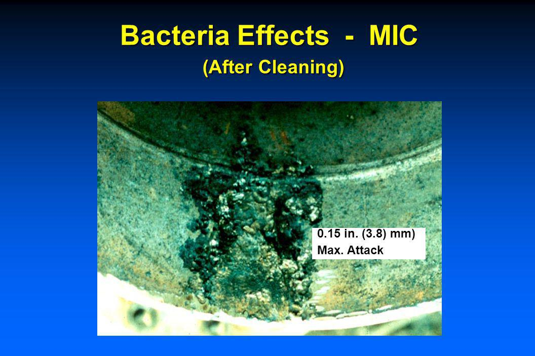 Bacteria Effects - MIC (Type 304 SS, Before Cleaning)