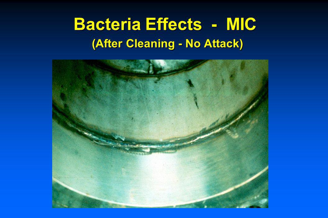 Bacteria Effects - MIC (After Cleaning) 0.15 in. (3.8) mm) Max. Attack