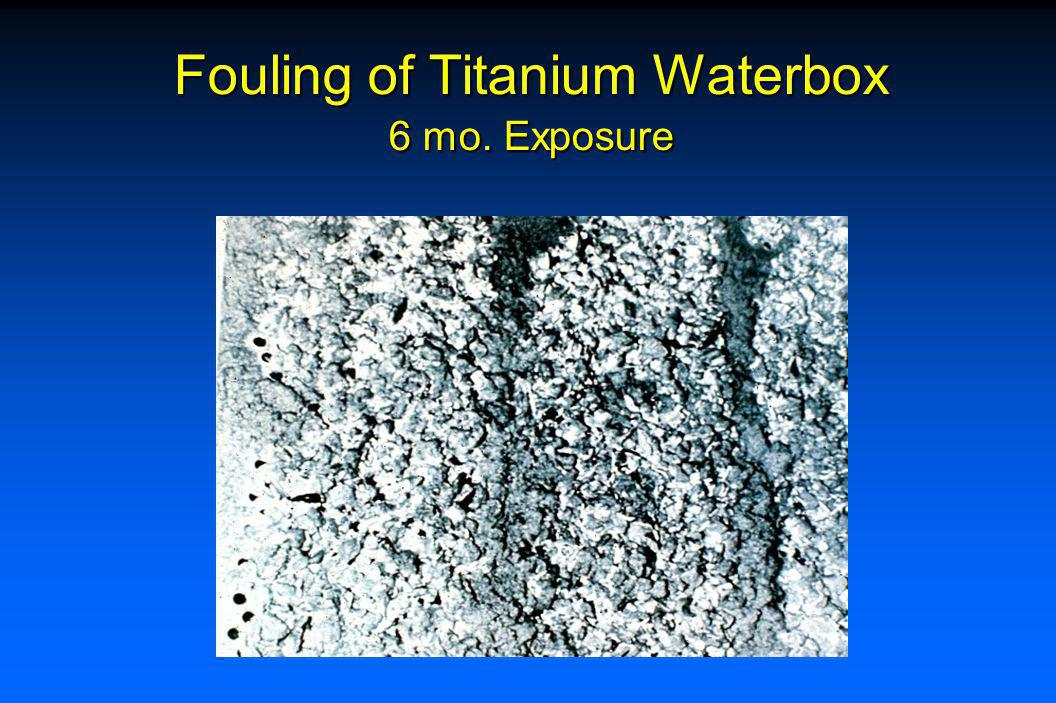 Fouling of Titanium Waterbox 3 mo. Exposure