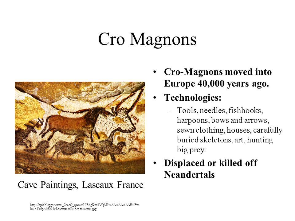 Cro Magnons Cro-Magnons moved into Europe 40,000 years ago.