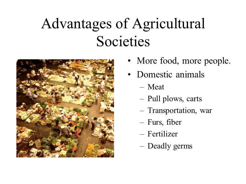 Advantages of Agricultural Societies More food, more people. Domestic animals –Meat –Pull plows, carts –Transportation, war –Furs, fiber –Fertilizer –