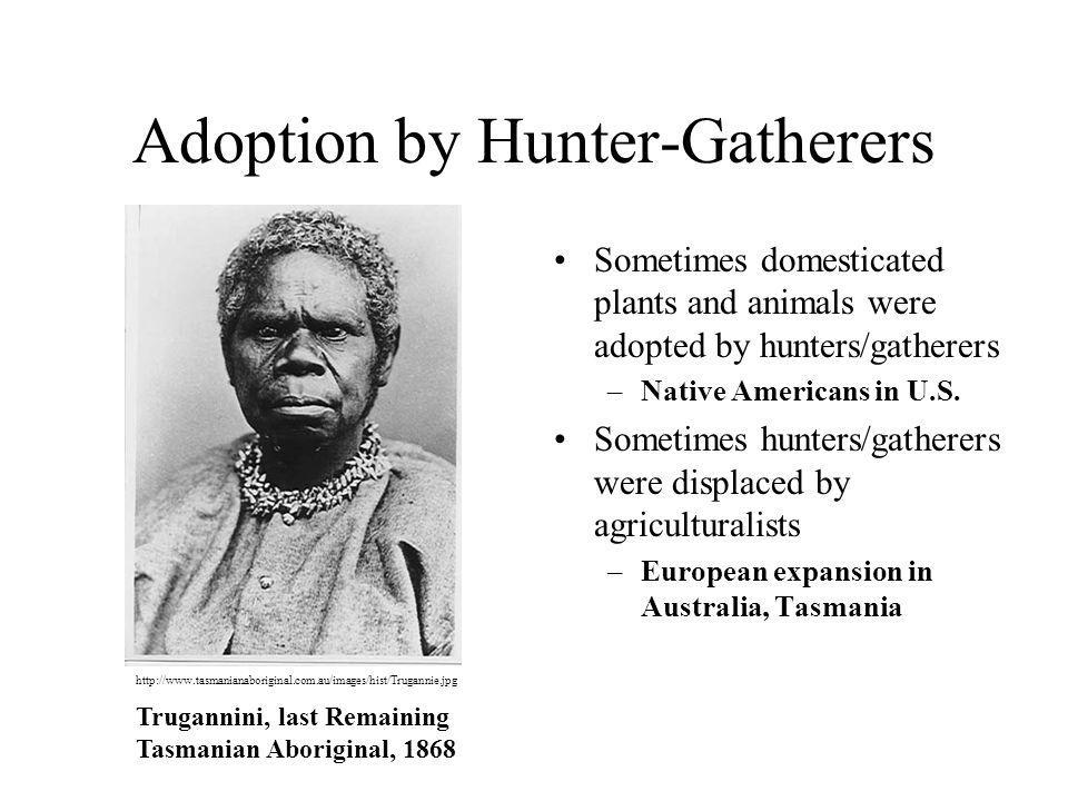 Adoption by Hunter-Gatherers Sometimes domesticated plants and animals were adopted by hunters/gatherers –Native Americans in U.S. Sometimes hunters/g
