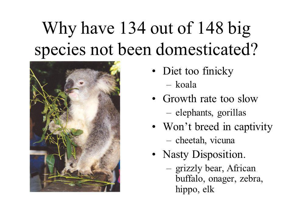Why have 134 out of 148 big species not been domesticated? Diet too finicky –koala Growth rate too slow –elephants, gorillas Wont breed in captivity –