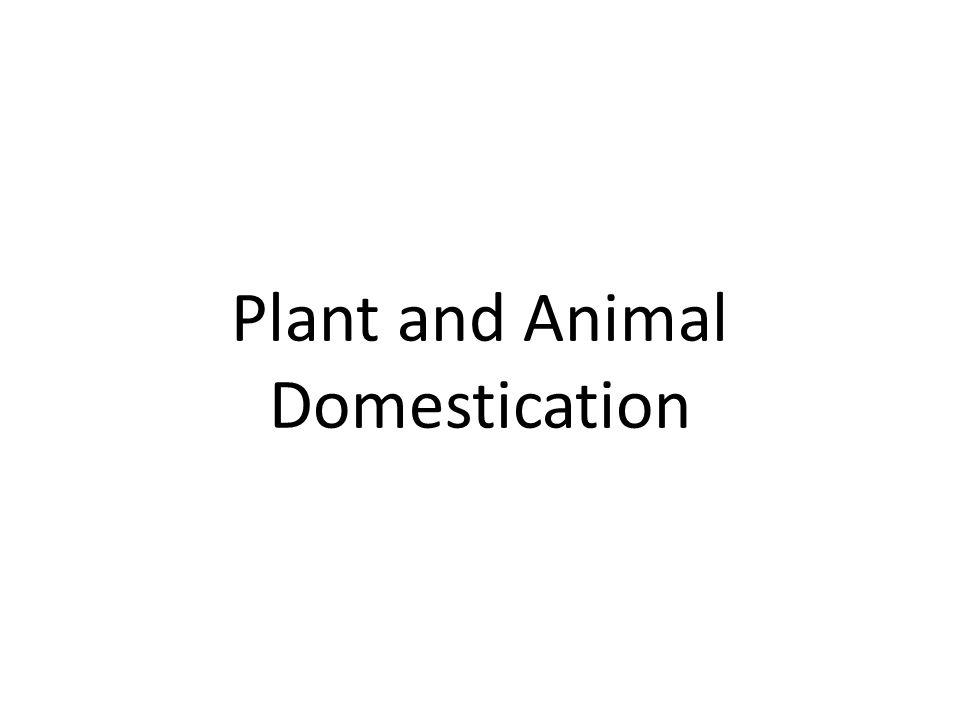 Plant and Animal Domestication