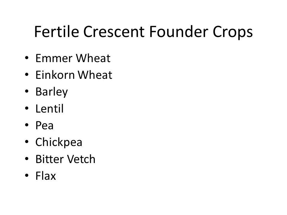 Fertile Crescent Founder Crops Emmer Wheat Einkorn Wheat Barley Lentil Pea Chickpea Bitter Vetch Flax