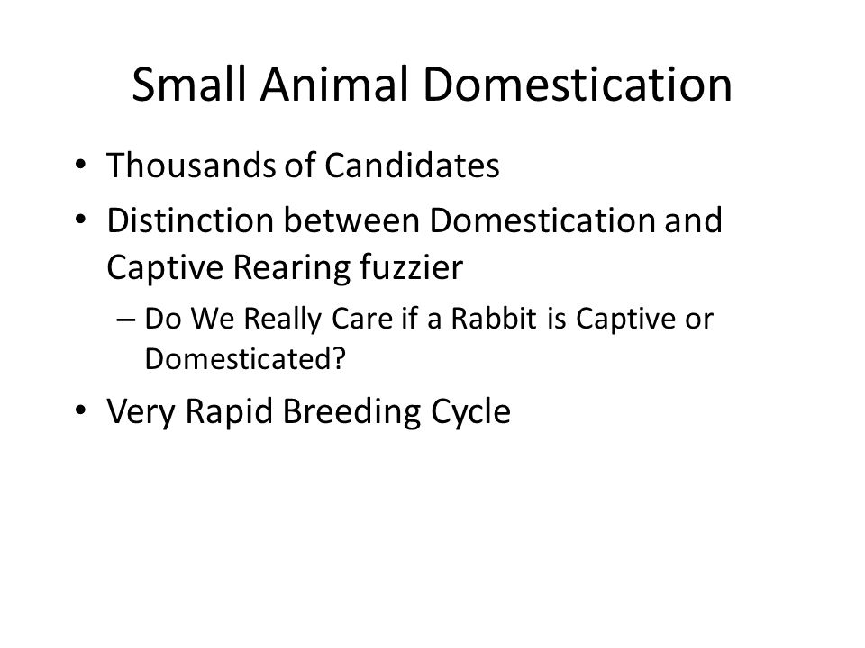 Small Animal Domestication Thousands of Candidates Distinction between Domestication and Captive Rearing fuzzier – Do We Really Care if a Rabbit is Ca