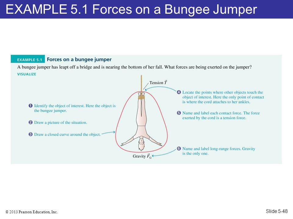 © 2013 Pearson Education, Inc. EXAMPLE 5.1 Forces on a Bungee Jumper Slide 5-48