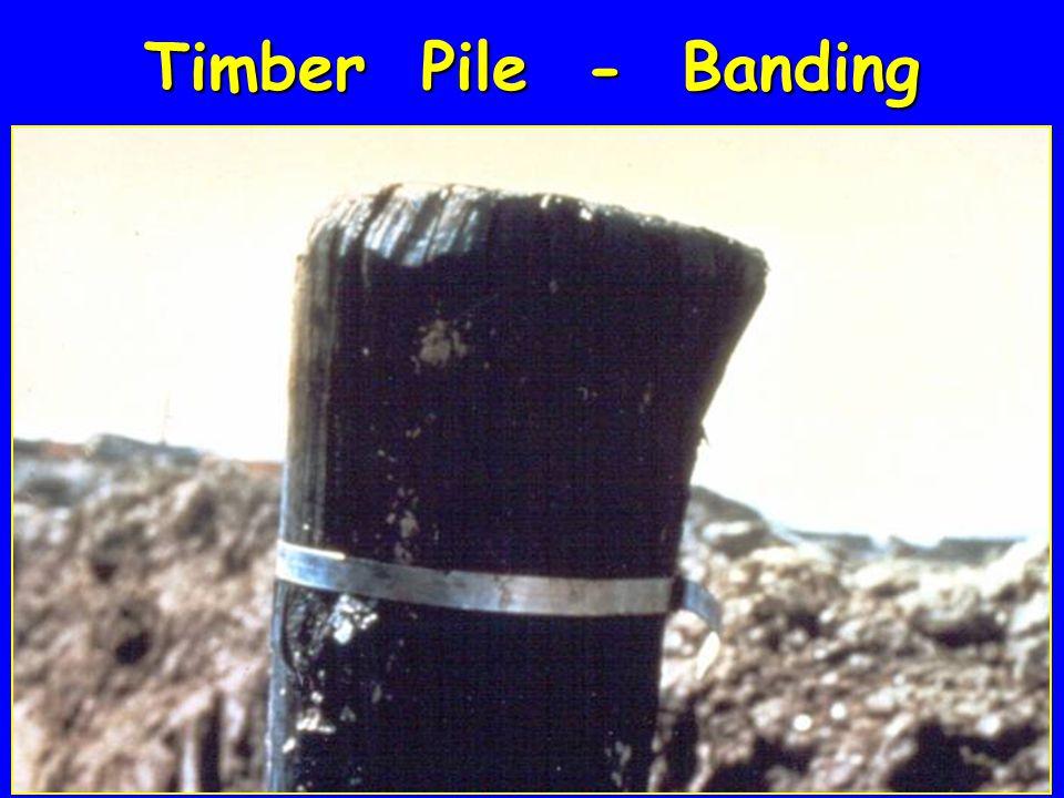 Timber Pile - Banding