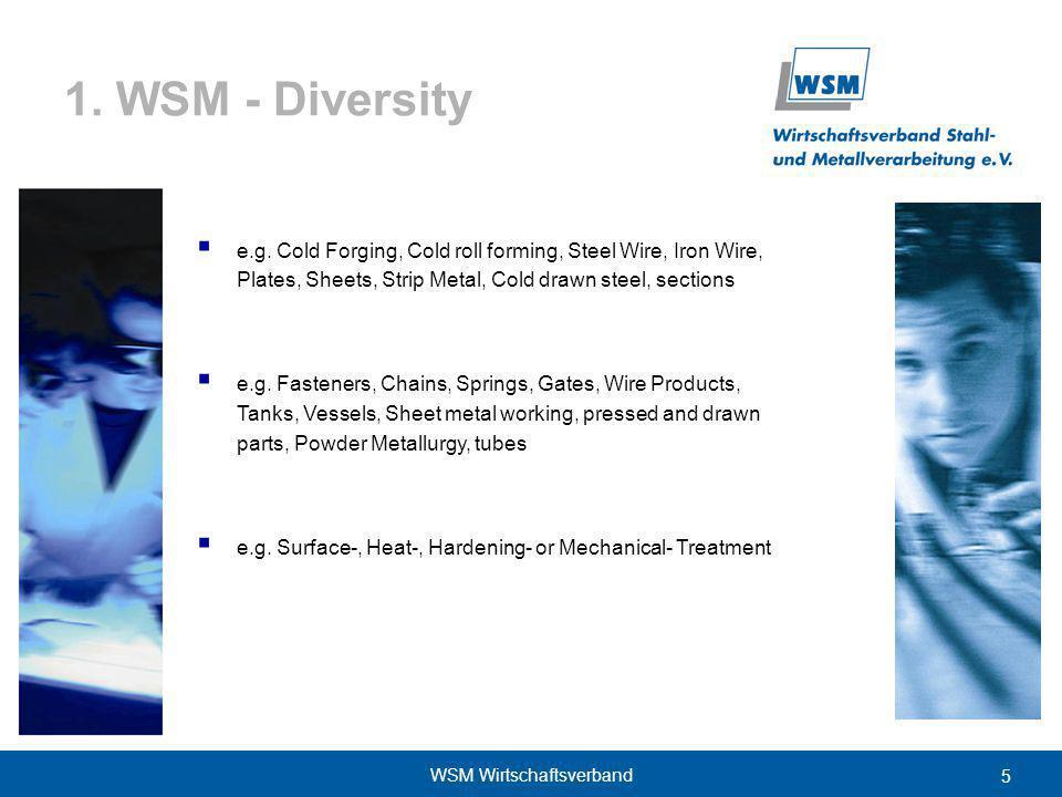 5 WSM Wirtschaftsverband 1. WSM - Diversity e.g.