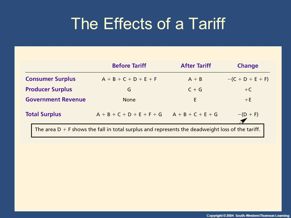 Copyright © 2004 South-Western/Thomson Learning The Effects of a Tariff