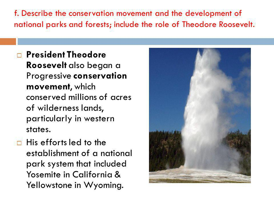 President Theodore Roosevelt also began a Progressive conservation movement, which conserved millions of acres of wilderness lands, particularly in western states.