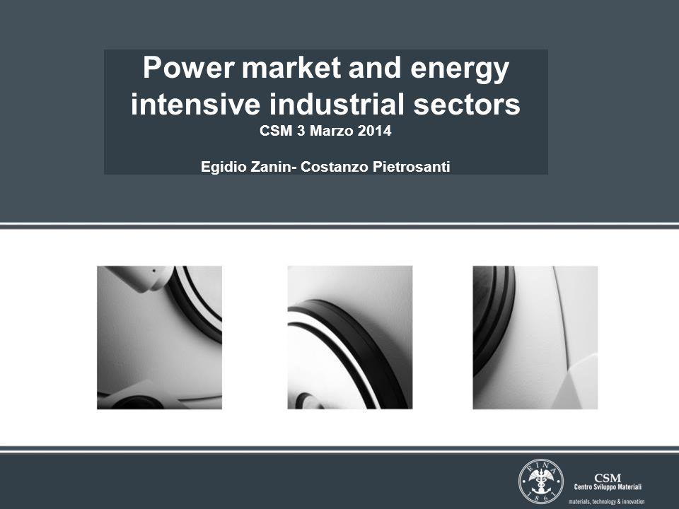 Power market and energy intensive industrial sectors CSM 3 Marzo 2014 Egidio Zanin- Costanzo Pietrosanti