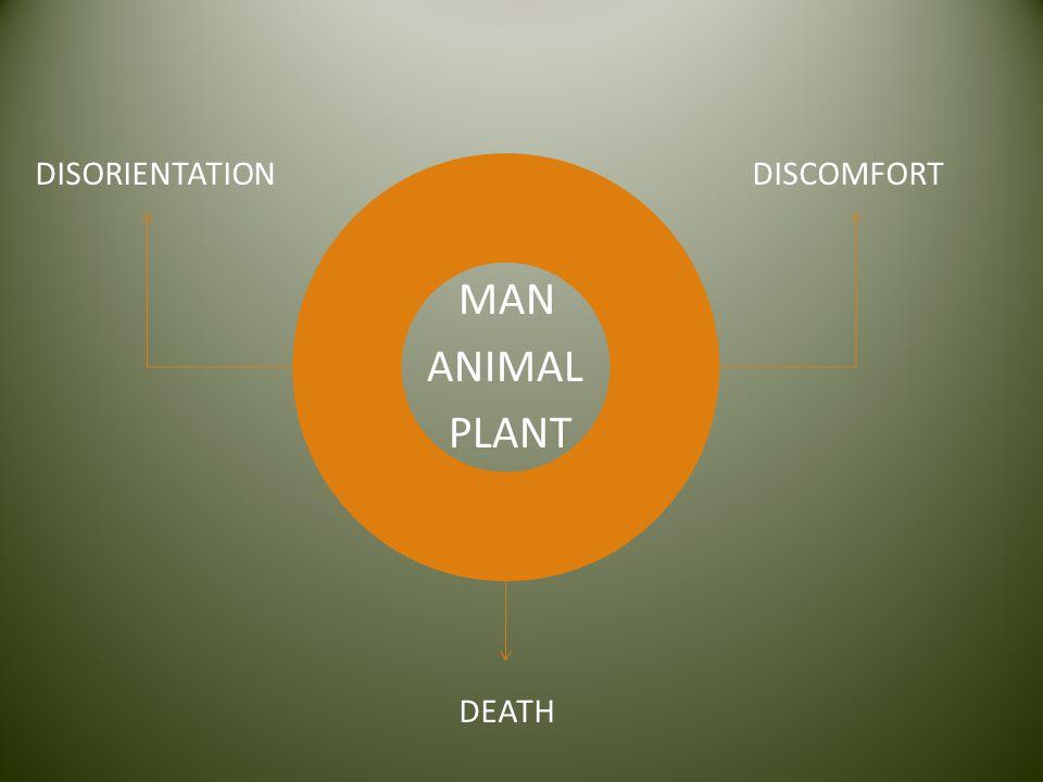 MAN ANIMAL PLANT DISCOMFORTDISORIENTATION DEATH