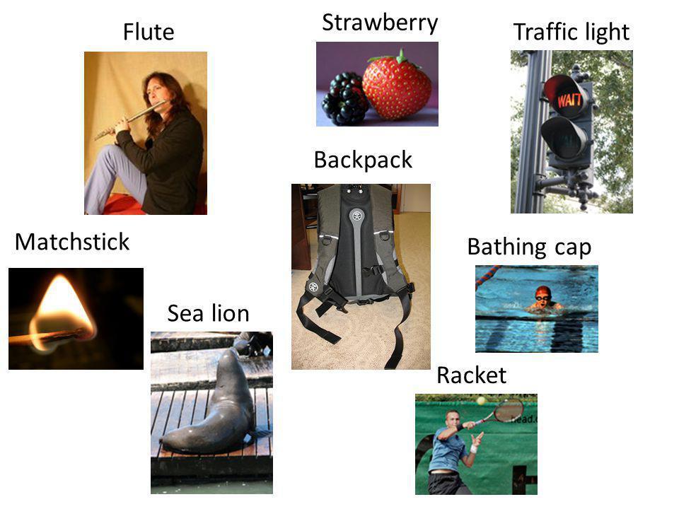 Flute Strawberry Traffic light Bathing cap Matchstick Racket Sea lion