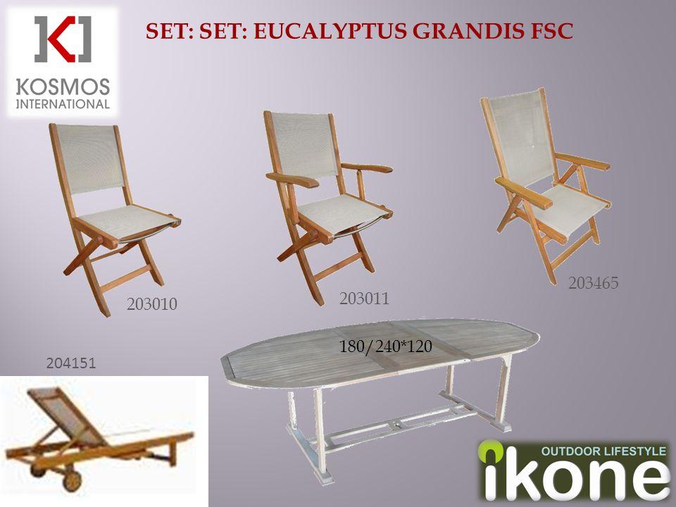 SET: SET: EUCALYPTUS GRANDIS FSC 204151 203011 203465 203010 180/240*120