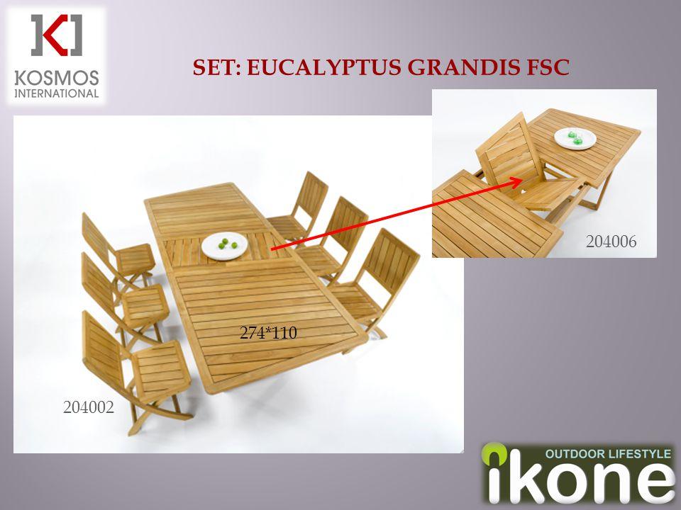 SET: EUCALYPTUS GRANDIS FSC 204006 204002 274*110