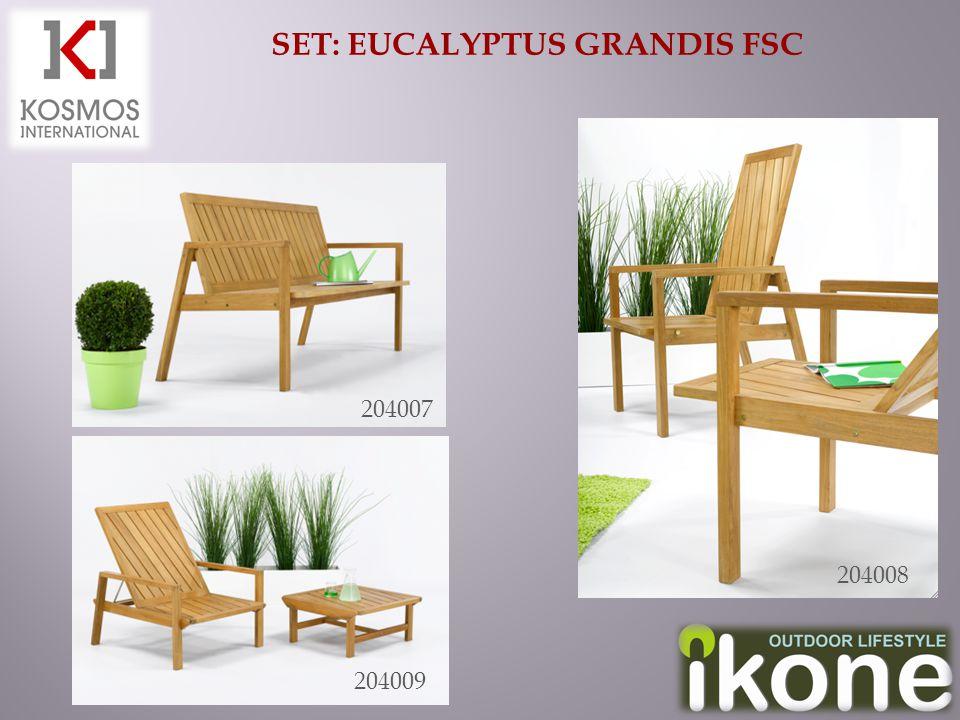 SET: EUCALYPTUS GRANDIS FSC 204007 204009 204008