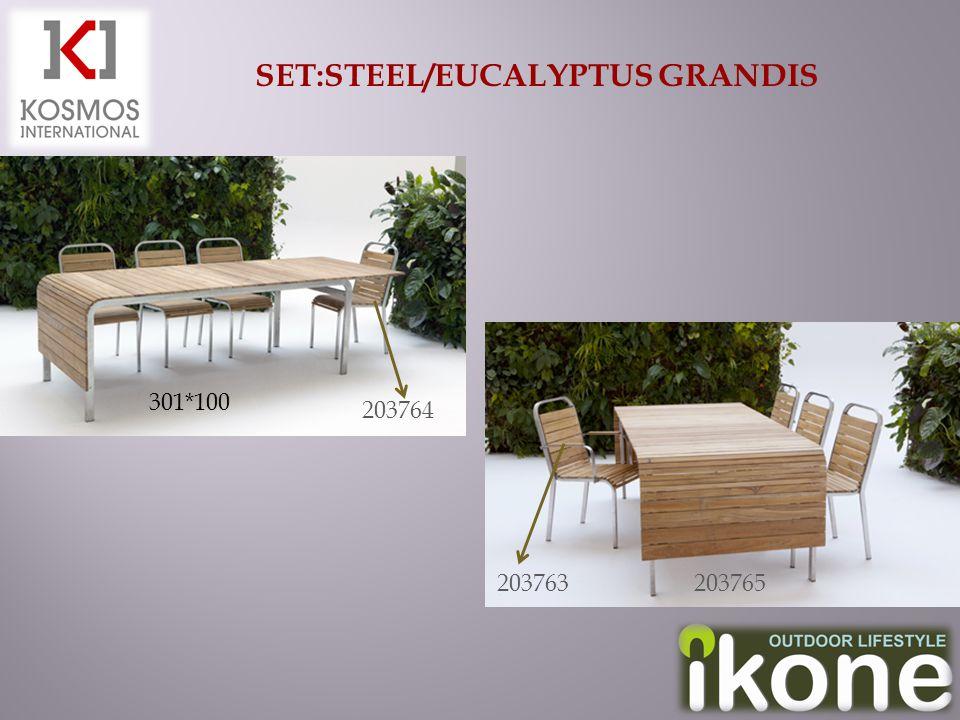 SET:STEEL/EUCALYPTUS GRANDIS 203765 301*100 203763 203764