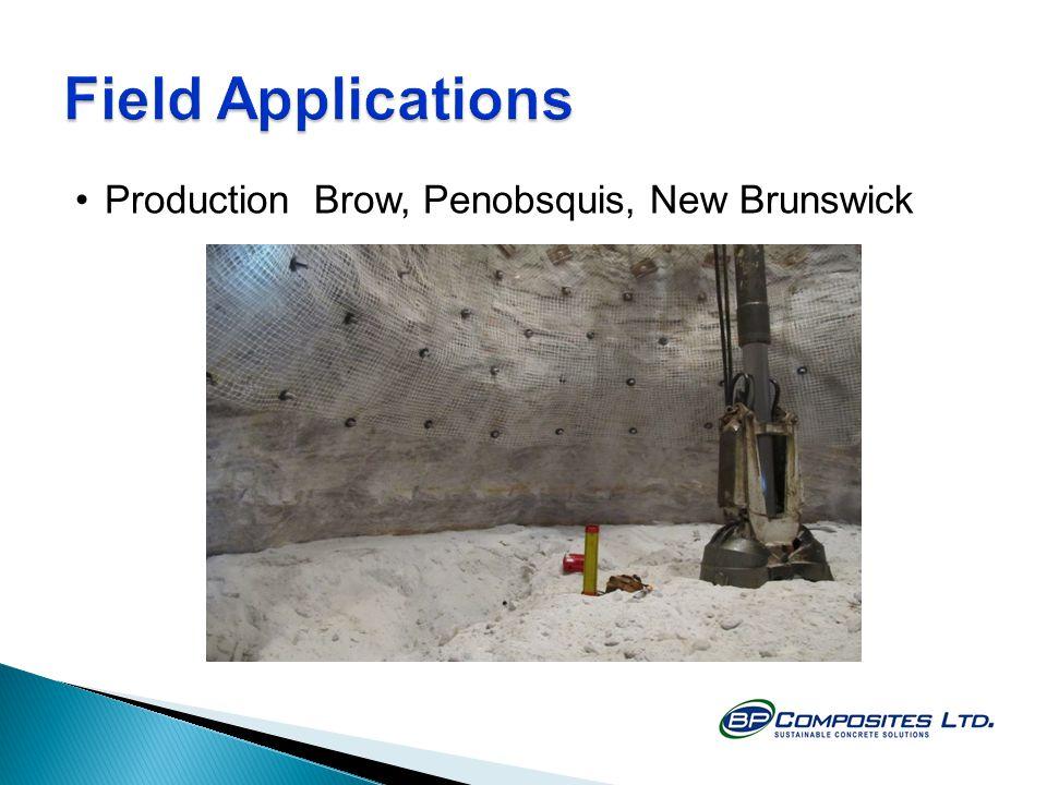 Production Brow, Penobsquis, New Brunswick
