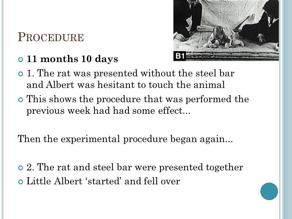 P ROCEDURE 11 months 10 days 1. The rat was presented without the steel bar and Albert was hesitant to touch the animal This shows the procedure that