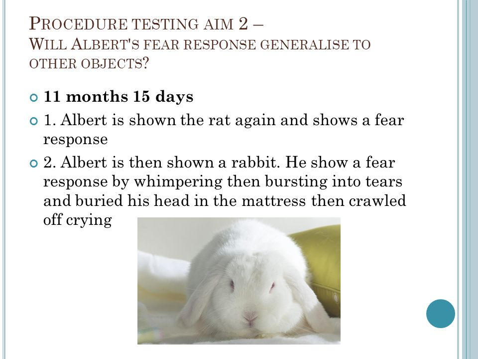 P ROCEDURE TESTING AIM 2 – W ILL A LBERT ' S FEAR RESPONSE GENERALISE TO OTHER OBJECTS ? 11 months 15 days 1. Albert is shown the rat again and shows