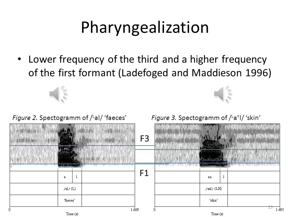 Pharyngealization Phonemic distinction between a pharyngealized /aˤ/ (spelled ) and a plain /a/ The contrast of a low, long, glottalized or pharyngeal