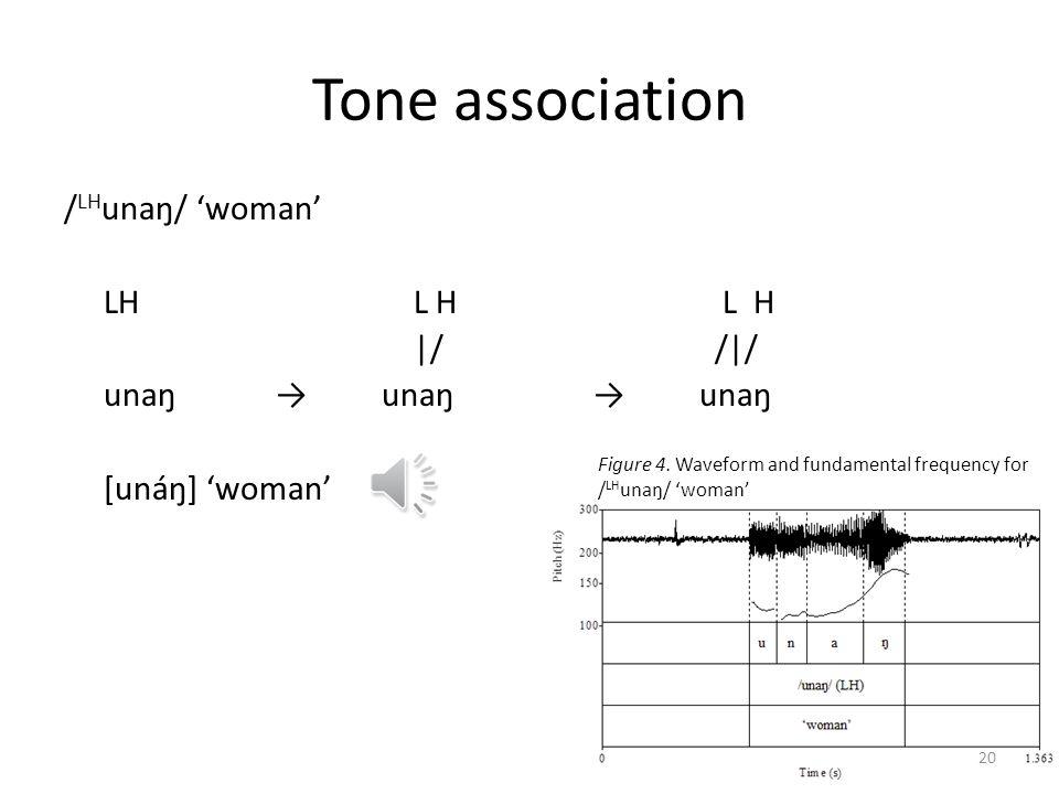 Tone association / LH unaŋ/ woman LH L H L H  / / / unaŋunaŋunaŋ [unáŋ] woman 19