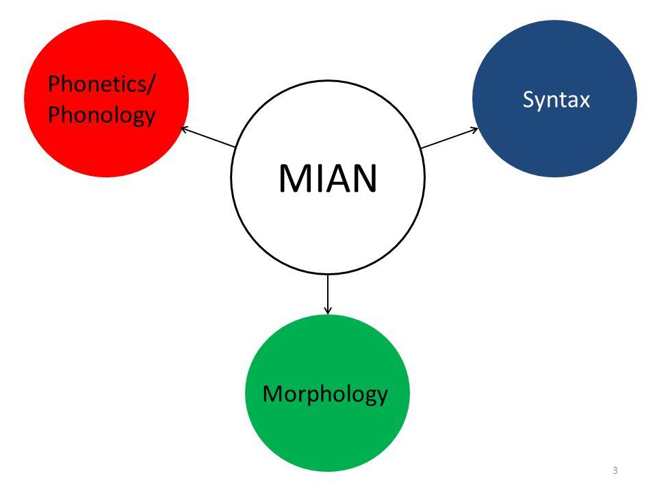 Gender syncretism MianSGPL MAC FBC N1AB N2BB AndiSGPL IAA IIBB IIICC IVDD e o e o i o i o SingularPlural N2 F M N1 Target genders in MianCited from Corbett (1991: 198) SingularPluralAssignment Masculine=e=iMales Feminine=o=iFemales Neuter 1=e=oInanimates Neuter 2=o Inanimates: locations, etc.