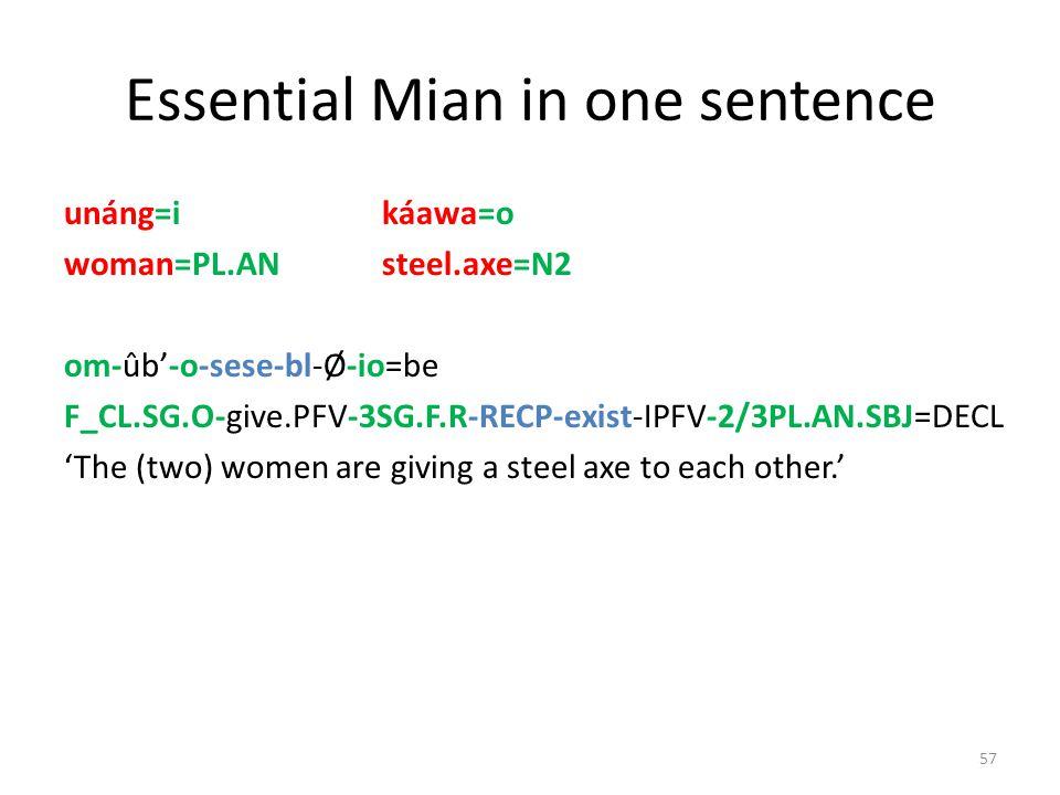 Development of the fused reciprocal V-s-e … V-s-e > V-s-e … V-s-e > V-sese – Haplology-like phonological reduction – For a historical scenario, see Fe