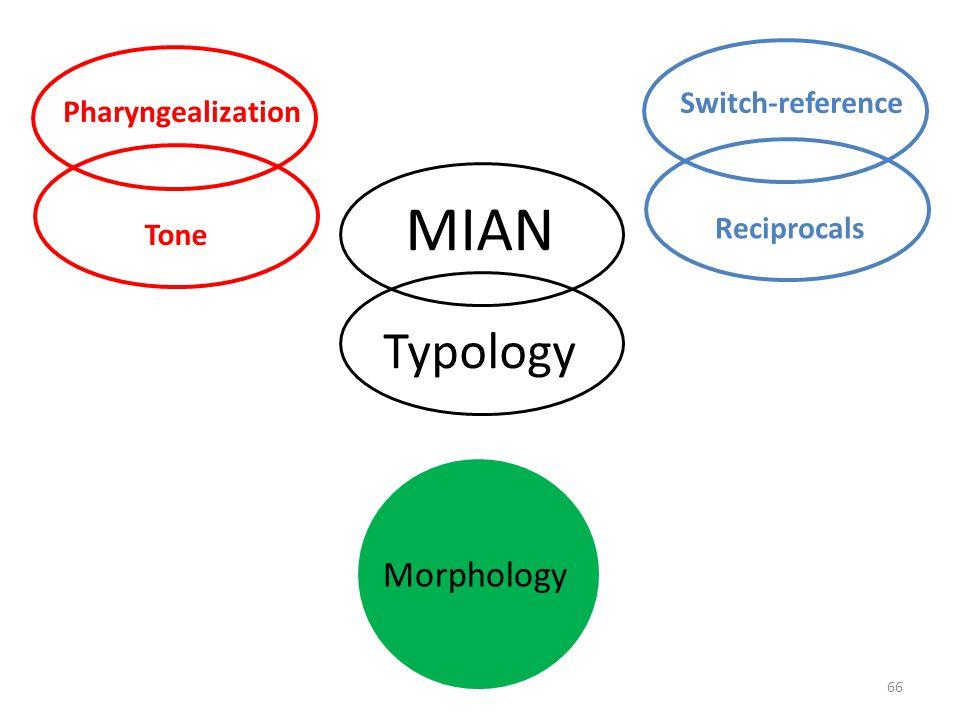 65 Morphology Syntax MIAN Typology Pharyngealization Tone
