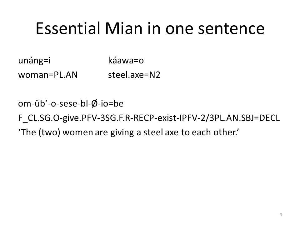 Agreement target: article a.naka=ea/the mannaka=i (the) men b.unáng=oa/the womanunáng=i (the) women c.tóm=ea/the stonetóm=o (the) stones d.káawa=oa/the steel axekáawa=o (the) steel axes 29