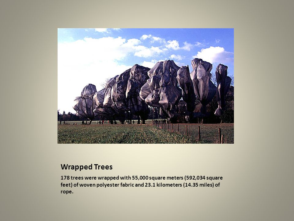 Wrapped Trees 178 trees were wrapped with 55,000 square meters (592,034 square feet) of woven polyester fabric and 23.1 kilometers (14.35 miles) of rope.