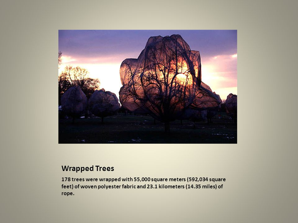 Wrapped Trees 178 trees were wrapped with 55,000 square meters (592,034 square feet) of woven polyester fabric and 23.1 kilometers (14.35 miles) of ro